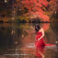 maternity photos hampton photography ny